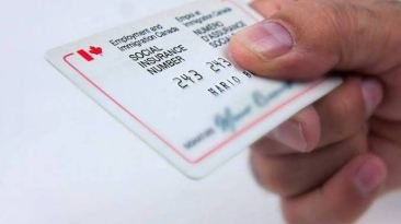 What Do I Need A Canadian Social Insurance Number For?
