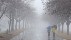 Do You Know Newfoundland Canada Is The Foggiest Place In The World?