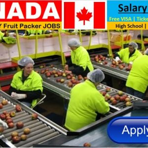 Fruit Packaging Jobs In Canada – Apply Now