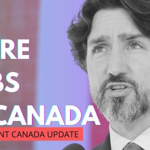 Canada Are in-Demand For Tech Professionals