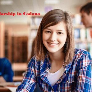 Top Seven University Scholarships in Canada for International Students